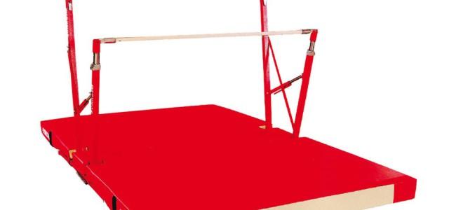Pour pratiquer notre sport, nous avons besoin de nombreux agrès et matériels. Ces équipements sont très coûteux. Les salles municipales sont équipées par les communestandis que les salles privées sont […]