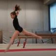 Description simplifiée du mouvement : Chorégraphie – 1/2 Valse – Rondade+Flip OU Saut de mains+1/2 tour – 2 pas – 1 pivot 1 tour – Saut vertical avec jambe à […]